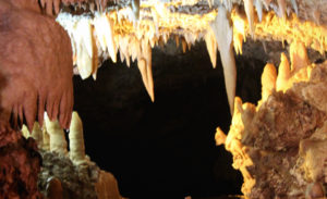 2014-biteable-beauty-2-harrisons-cave-barbados-2
