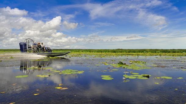 Airboating, Mary River Floodplains, NT