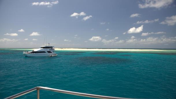Michaelmas Cay, Tropical North Queensland